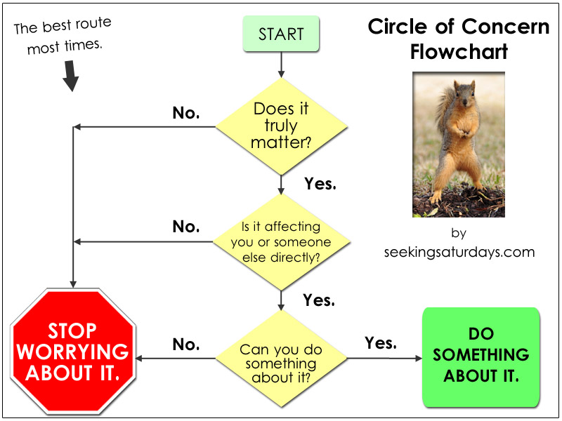 Circle of Concern or Influence Flowchart & Diagram for Making a Decision