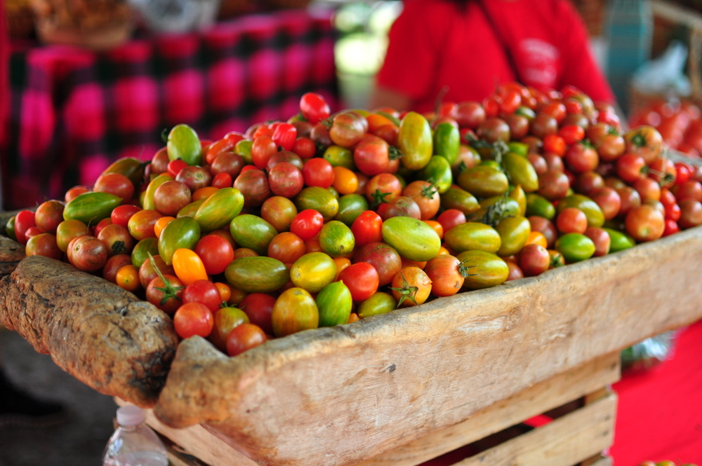A large bowl of Colorful grape tomatoes found at a farmers market in Delray Beach, FL